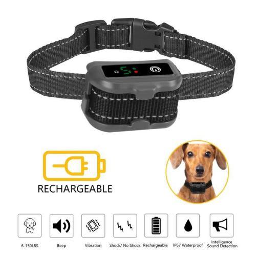 collier pour chien avec bip