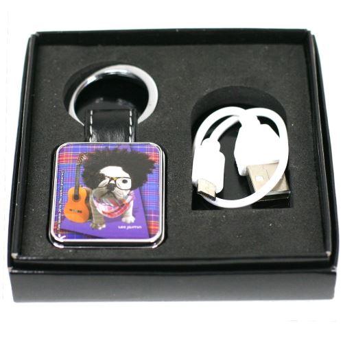 Porte Clef / Briquet USB - Chien Guitariste