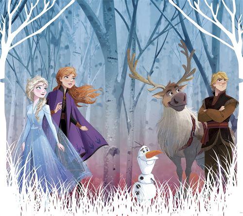 Rideaux - Disney La Reine des Neiges 2 - modèle dessin - 2 pièces 90 cm x 160 cm
