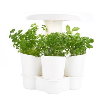potager d 39 int rieur intelligent calla pour plantes. Black Bedroom Furniture Sets. Home Design Ideas