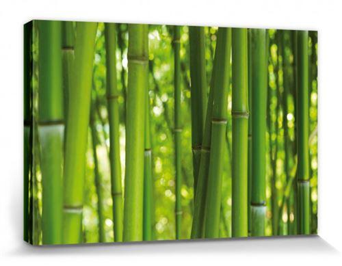 Bambous Poster Reproduction Sur Toile, Tendue Sur Châssis - Forêt De Bambou (20x30 cm)