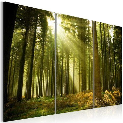 Tableau - Forêt - 120x80 - Paysages - Forêt - beauté de