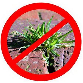 NOOR 01009010UKSC Bâche anti-mauvaises herbes Noir 0,9 x 10 m ...