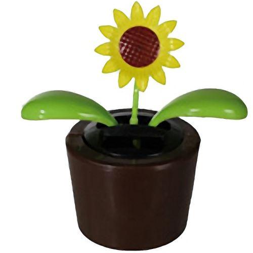 Fleur jaune solaire
