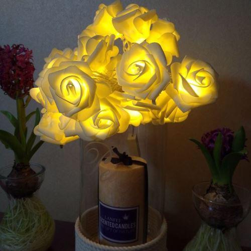 Eclairage LED Guirlande/Décoration LED 3m forme de rose prise USB romantique LED chaîne vacances lumière, lampe décorative fée de style adolescente 20 LED pour Noël, mariage, chambre à coucher (blanc chaud)