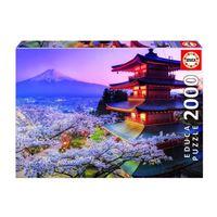 2000 MONT FUJI JAPON