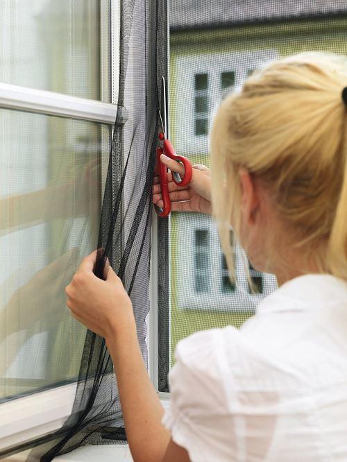 1,70 m x 1,80 m Tesa Moustiquaire COMFORT pour fenêtre