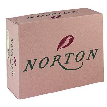 noir Norton Boots Deauville
