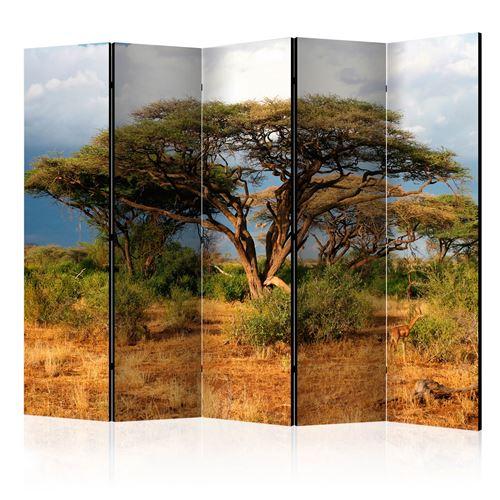 Paris Prix - Paravent 5 Volets samburu National Reserve, Kenya 172x225cm