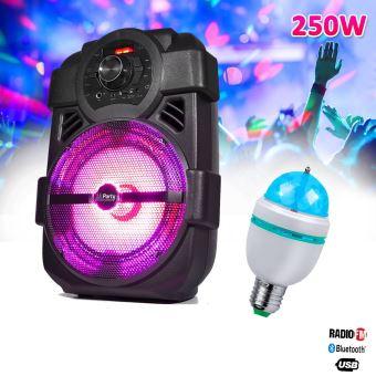 Enceinte karaoke mobile 250W 8\