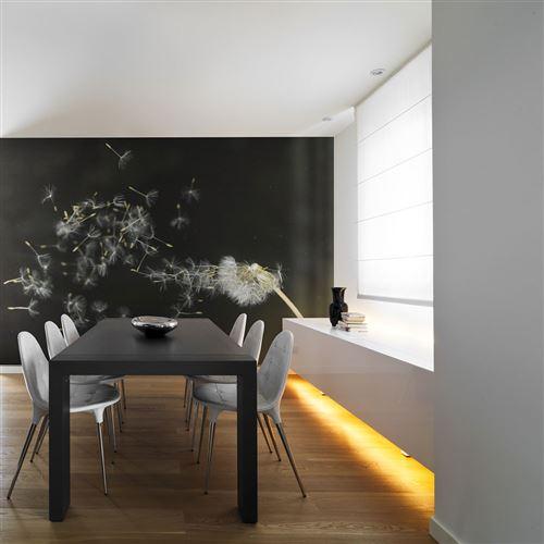 Papier peint - Graines de dent-de-lion emportées par le vent - Décoration, image, art | Fleurs | Pissenlits |