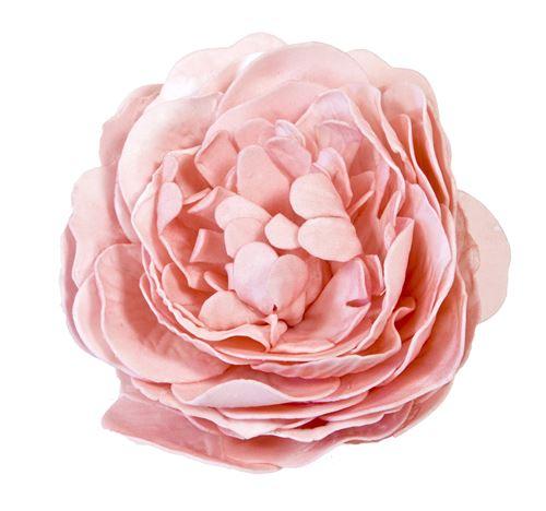 Rose ancienne soft coloris Pèche - 12 cm