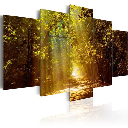 Tableau - Forêt ensoleillée - Décoration, image, art | Paysages | Forêt |