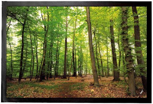 Forêts Paillasson Essuie-Pieds - Forêt Du Silence (40x60 cm)