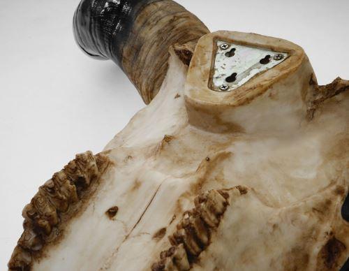 en Extérieur Nature Polyresin Taureau Taureau Déco Crâne 132cm HWC-A14