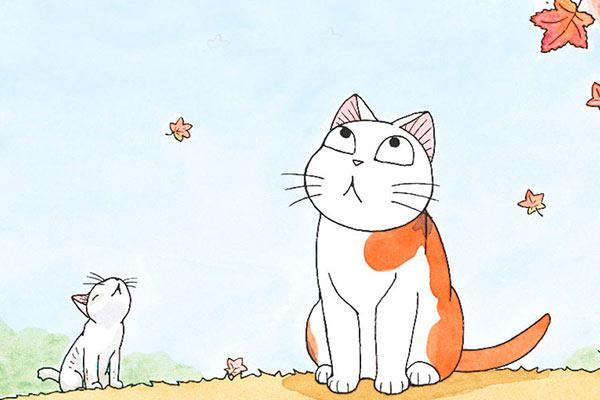 Gatos ilustrados: Miauuu, miauuu