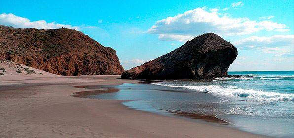 deborah levy - playa almeria