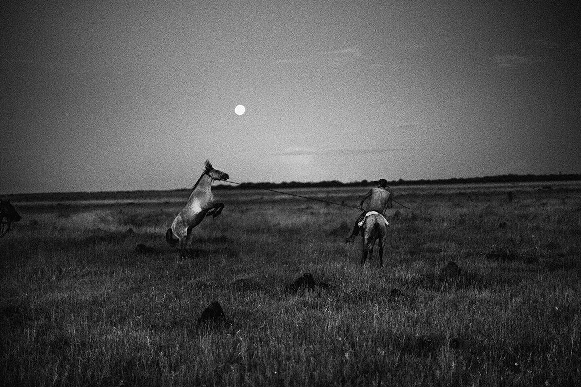 Llano, fotografías de Juanita Escobar