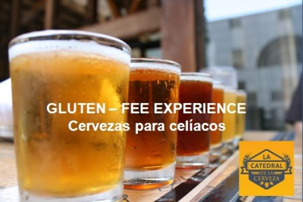 Gluten Free Experience