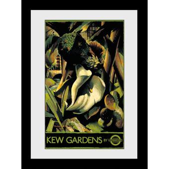 Fotografia enmarcada Transport For London Kew Gardens 60x80cm