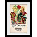 Fotografia enmarcada Transport For London Kew Palm House