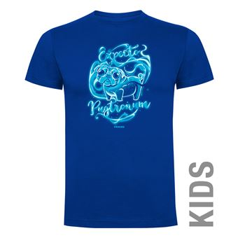 Camiseta manga corta Friking, Modelo 636 Harry Potter, Expecto pugtronum, Talla 6 años, Royal