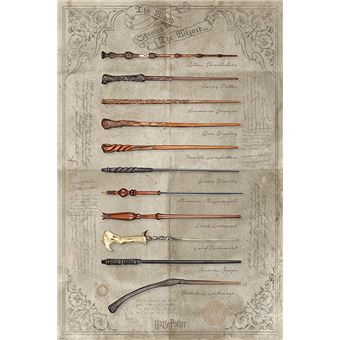 Poster Harry Potter The Wand Chooses The Wizard