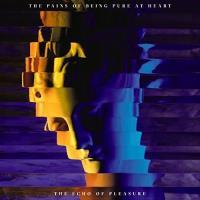 The Echo of Pleasure - Vinilo