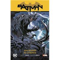 Batman vol. 10: Vida después de la muerte (Batman Saga - Renacido parte 4)