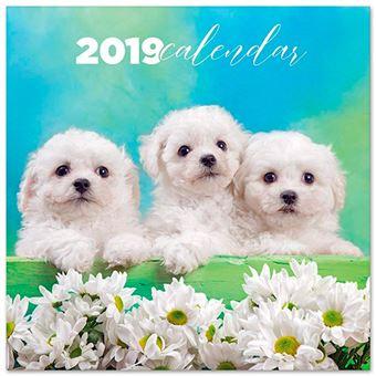 Calendario 2019 Chantrenne Dog