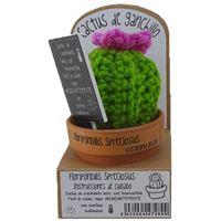 Cactus de ganchillo – Floripóndilis Spreciosus  Mini