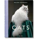 Walter chandoha-cats photographs 19