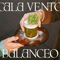 Balanceo - Vinilo