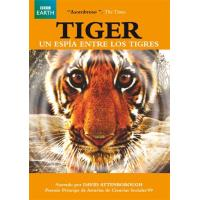 Tiger: Un espía entre los tigres - DVD
