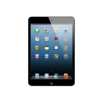 iPad mini 16 GB WiFi gris espacial