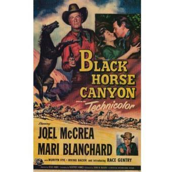 El Cañon del Corcel Negro - DVD