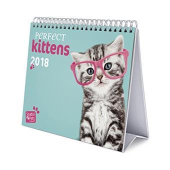Calendario sobremesa Deluxe 2018 Gatitos