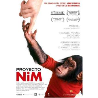 Proyecto Nim - DVD