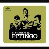 El flamenco es...Pitingo