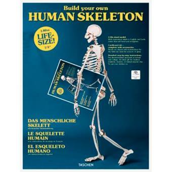 Build Your Own Human Skeleton. Life Size!