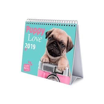 Calendario sobremesa 2019 Deluxe Studio Pets Dogs