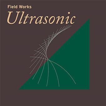 Field Works - Ultrasonic - 2 vinilos