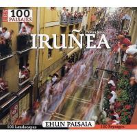 Iruñea / Pamplona 100 paisajes