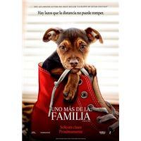Uno más de la familia - DVD