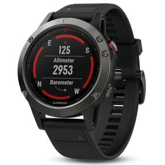 Smartwatch Garmin Fenix 5S Gris/Negro