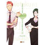 Qué difícil es el amor para un otaku núm. 02 (tercera edición)