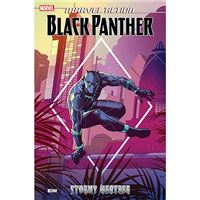 Marvel - Black Panther - Stormy Weather