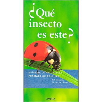 ¿Qué insecto es este?
