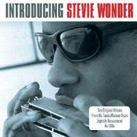 Introducing Stevie Wonder