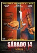 Sábado 14 (Scream) - DVD
